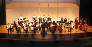 YO Prof ImageResized 300x153 Long Bay Symphony Youth Orchestra Concert